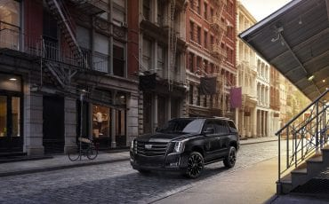 2019 Escalade Sport Edition