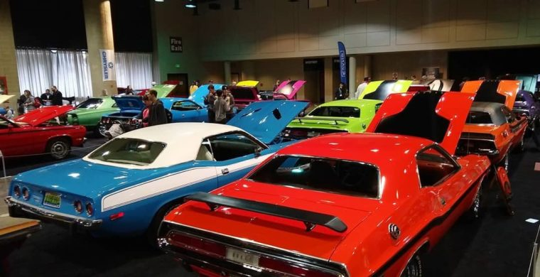 Colourful cars UAE